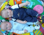 Peter and Robbie in Patch baby blue and choo navy